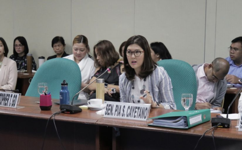 Senate ways and means panel holds first hearing